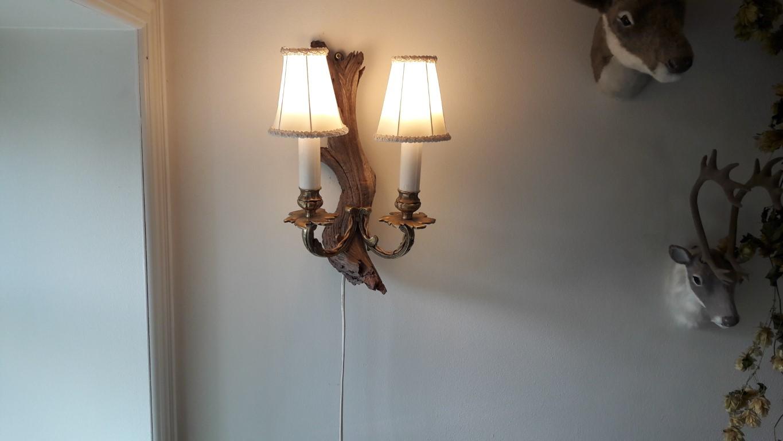 dgh driftwoodlamp 2